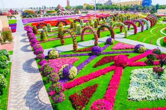 dubai-miracle-gardens